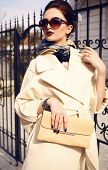 fashion outdoor photo of beautiful elegant lady wearing luxurious beige coat and sunglasses poster