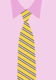 Pink Shirt And Yellow Necktie; Detail