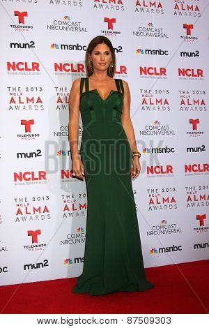 LOS ANGELES - SEP 27:  Daisy Fuentes at the 2013 ALMA Awards - Press Room at Pasadena Civic Auditorium on September 27, 2013 in Pasadena, CA