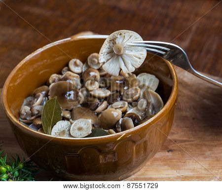 Marinated honey fungus in brown bowl on wooden table. Studio shot. poster