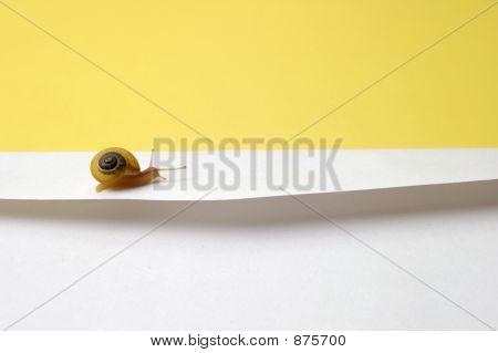Konzept Snail mail