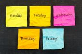 Colourful days of week sticky notes on board poster