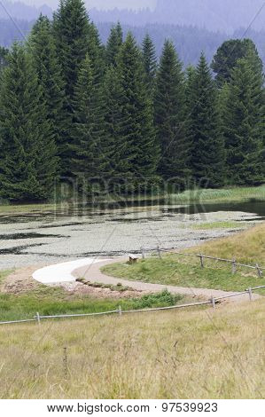 Landscape Of Pond In Mountain