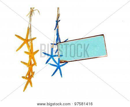 Marine theme aqua turquoise plate