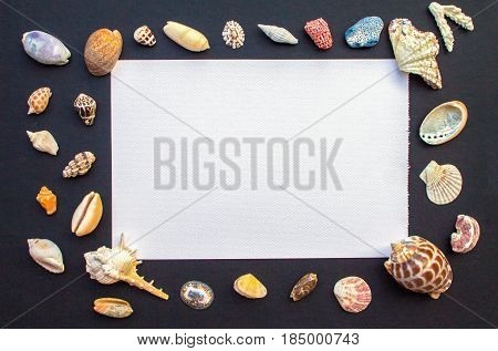 Black table with white paper and sea shells. Empty paper with shellfish frame. Oceanic shells mockup template. Summer holiday message banner template. Tropical sea shells and paper sheet flat lay