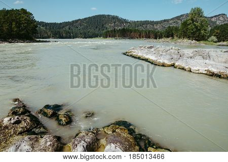 The place of the calm of the Raging Katun between the mountains and the hills. Rocks and stones in the Milk River. Mountain Altai.