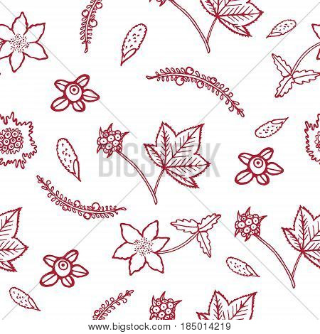 Hand drawn seamless pattern with blueberry, cloudberry, cowberry and crowberry. Arctic and north flowers and berries of Tundra.Purple doodle on white background.