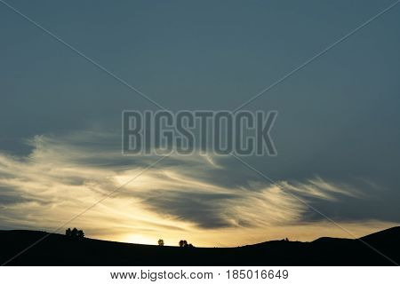 Sunset landscape of the valley. Silhouettes of plants and trees on a clear horizon line. Picturesque. Magic sky.