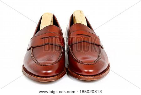 Pair of leather burgundy penny loafer shoes with shoe tree inside together on white background. Horizontal image