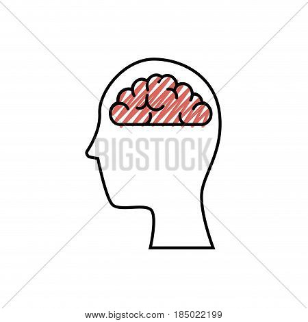 head with brain organ icon over white background. colorful desing. vector illustration