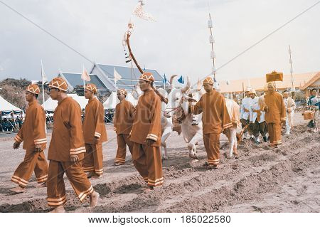 BANGKOK, THAILAND - MAY 13,2015 : Unidentified Government officials attend the ceremony -Perform for an auspicious beginning for planting season on the Royal Plowing Ceremony in Bangkok city,Middle of Thailand.