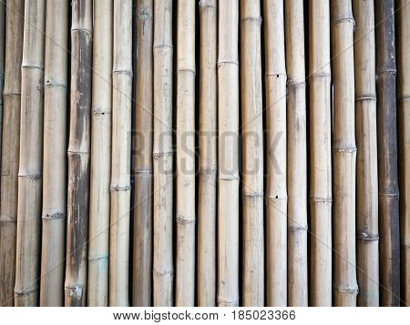 White bamboo fence background with some grunge.