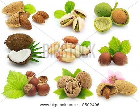 Collage from fresh nuts with leaves