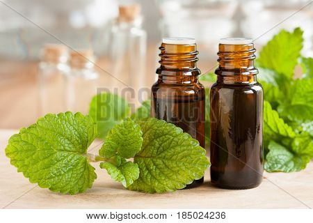 Melissa (lemon Balm) Essential Oil - Two Bottles With Fresh Melissa Leaves In The Foreground