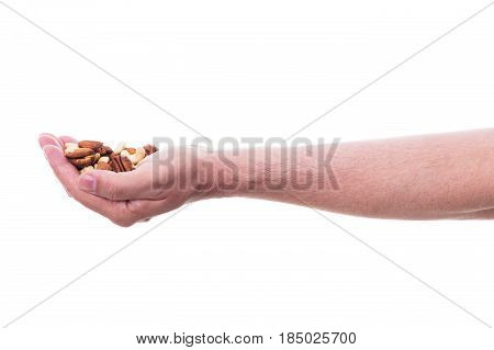 male hand is holding various nuts isolated in front of white background
