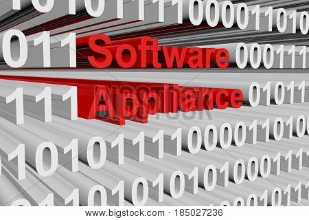 Software appliance in the form of binary code, 3D illustration