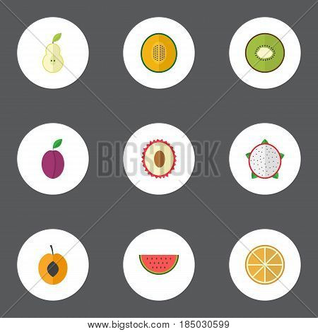 Flat Litchi, Melon Slice, Exotic Dessert And Other Vector Elements. Set Of Berry Flat Symbols Also Includes Nectarine, Citrus, Melon Objects.