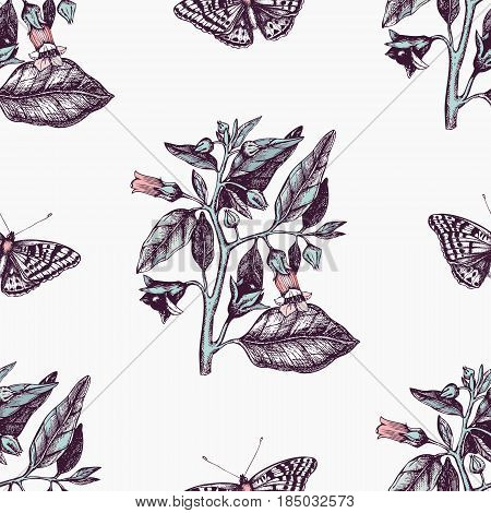 Vintage seamless pattern with Ink hand drawn Poligonia butterflies illustration and Belladonna flower sketch. Vector background with highly detailed moth and poisonous plant sketch