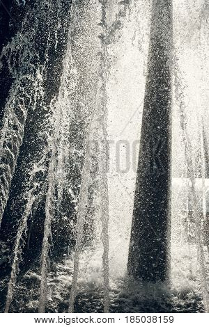 Jets Of Water In Sunlight. Spray Fountain. Splashes Of Water. Water Drops.
