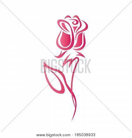 Graphical flower illustration. Contour flower, bloom flower, decorative flower, isolate flower.