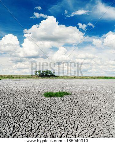 deep blue sky over drought earth