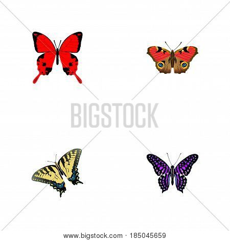 Realistic Checkerspot, Sangaris, American Painted Lady And Other Vector Elements. Set Of Beautiful Realistic Symbols Also Includes American, Butterfly, Julia Objects.