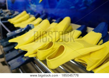 Flippers on a stand in a swimming pool