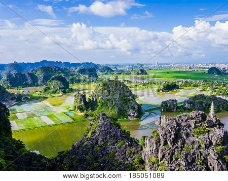Panoramic view of karst formations and rice paddy fields in Tam Coc, Ninh Binh province, Vietnam