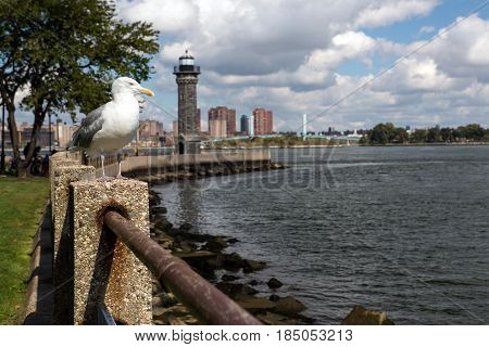 Park with a lighthouse in Roosevelt island