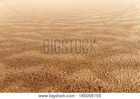 sand dune / bright summer evening before sunset photo