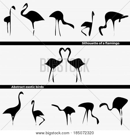 Vector set of logo in the form of a silhouette of tropical flamingo birds on a white background