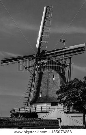 ALKMAAR, THE NETHERLANDS - AUGUST 25, 2013: