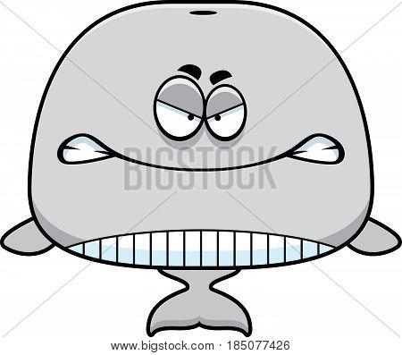 Angry Cartoon Whale