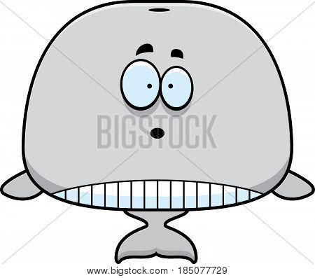 Surprised Cartoon Whale