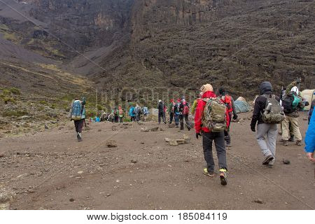 Track on Kilimanjaro on the Machame Route Whiskey. 4 day on the way
