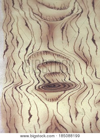 Longitudinal section of teak with a pattern of knots and rings