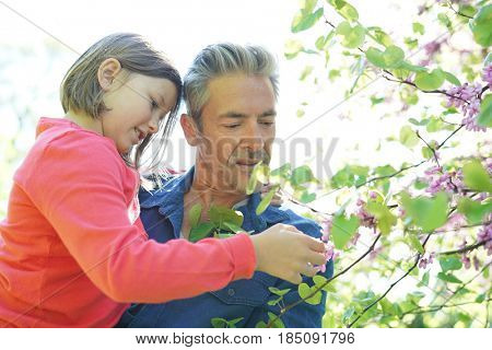 Portrait of daddy with girl looking at flower buds