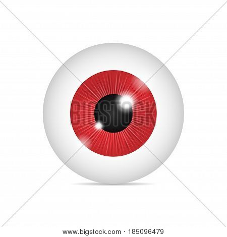 Realistic human, beast or monster eyeball. Red eye on white background