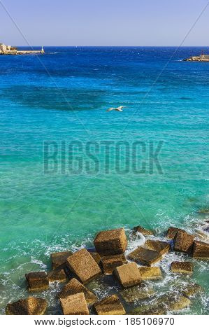 Salento coast: view of the port of Otranto. Gull in flight between the signal headlight. Italy (Apulia).