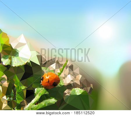 Summer polygonal landscape with dusty road and ladybug. Ladybug sitting on a leaves next to the road in fields