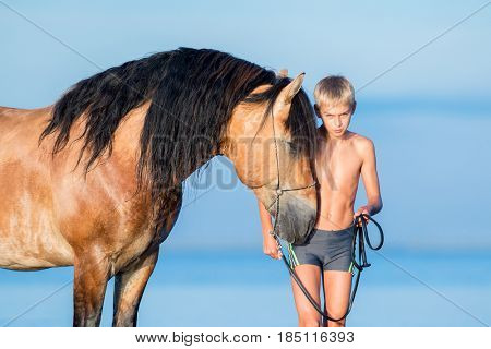 Portrait of serious young rider with horse in sunset. Dialog between big horse and boy on blue background outdoors.