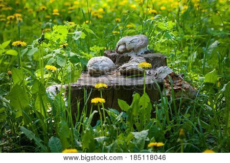 Sunny day. The sunny meadow. Stump of an old tree. On the stump grow mushrooms. Grass, dandelions.