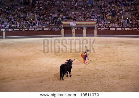 MADRID - AUGUST 8: The torero Juan Pablo Sanchez fights a bull named Calabaza in the Las Ventas bullring on August 8, 2010 in Madrid, Spain.