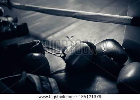 Boxing gloves in the ring. hign contrast and monochrome color tone. Toning.
