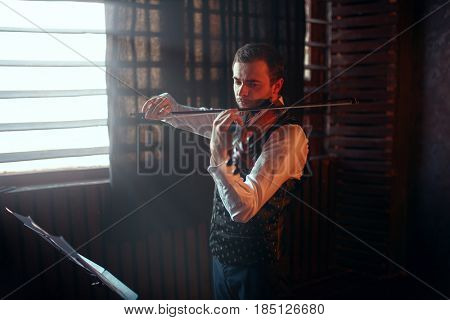 Male violinist playing on violin against window