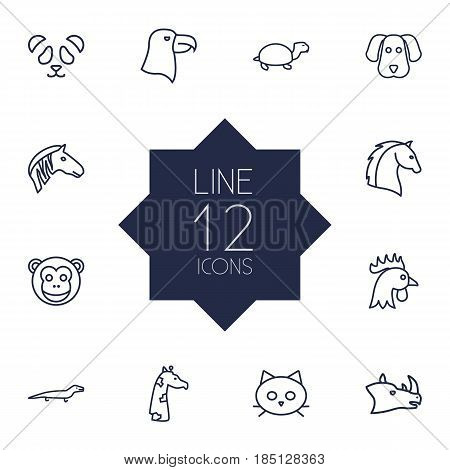 Set Of 12 Brute Outline Icons Set.Collection Of Dog, Rhino, Mammal And Other Elements.