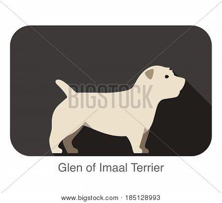 Glen Of Imaal Terrier Standing An Watching, Flat Icon Design