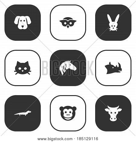 Set Of 9 Brute Icons Set.Collection Of Pussy, Gecko, Rhinoceros And Other Elements.