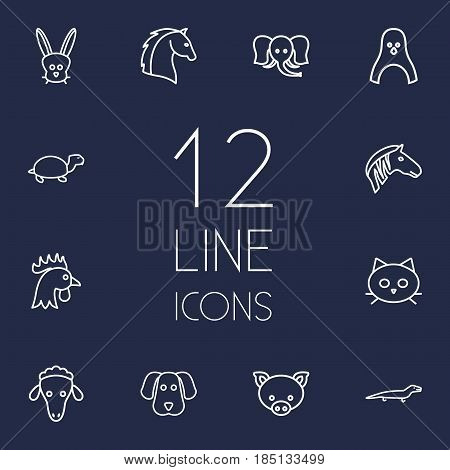 Set Of 12 Brute Outline Icons Set.Collection Of Turtle, Pig, Sheep And Other Elements.