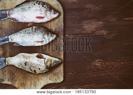 Fish carp in the scales on the kitchen cutting board empty space on the right